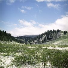 Free Snow In Summer Mountains Stock Images - 6413144
