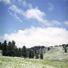 Snow In Summer Mountains Royalty Free Stock Photography