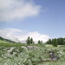 Snow In Summer Mountains Stock Image