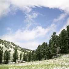 Free Snow In Summer Mountains Royalty Free Stock Photography - 6413527