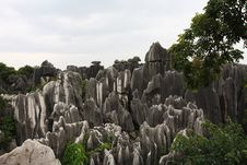 Free Stone Forest Stock Images - 6413554
