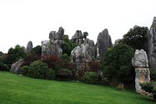 Free Stone Forest Royalty Free Stock Photography - 6414807