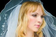 Free Young Bride Stock Photography - 6414822