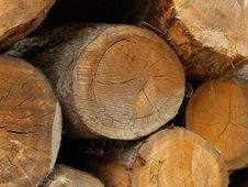 Free Timber Stock Royalty Free Stock Images - 6415159