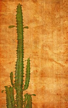 Abstract Paper Texture With Cactus Royalty Free Stock Photo