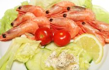 Free Prawn Salad Royalty Free Stock Photos - 6416418