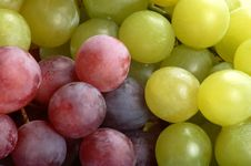 Free Grapes Stock Photography - 6417652