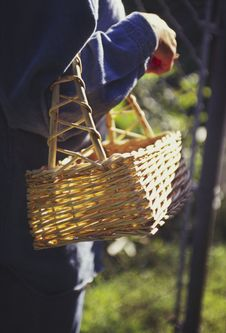 Free Woman Carrying Empty Garden Basket Royalty Free Stock Photos - 6418108