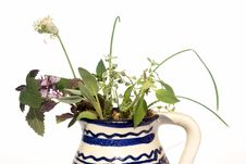 Free Fresh Herbs In Vase Stock Images - 6418374