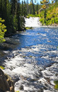Free The Lewis Falls In The Yellowstone Stock Photography - 6419002
