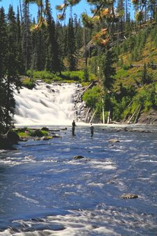 Free The Lewis Falls In The Yellowstone Royalty Free Stock Images - 6419009
