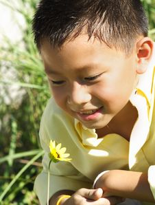Free Young Boy Sniffing A Flower Royalty Free Stock Images - 6419729