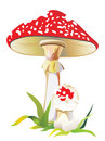 Free Fly Agaric In A Grass Stock Image - 6428951