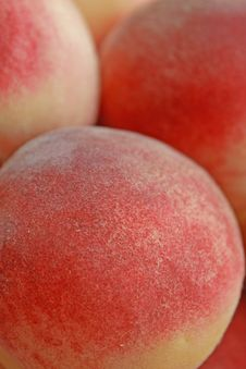 Free Ripe Peaches Royalty Free Stock Images - 6420599