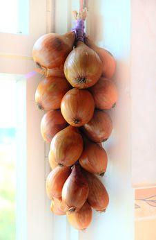 Free Onion Bunch Stock Photos - 6421333