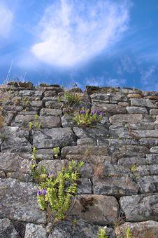 Free Old Irish Wall 3 Royalty Free Stock Photo - 6422005