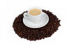 Free A Cup Of Coffee On Top Of Coffee Beans Royalty Free Stock Photos - 6422688