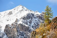 Free Mountain Peak And Larch Stock Photography - 6422822
