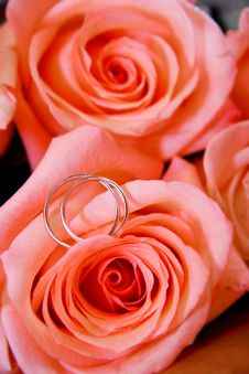 Free Wedding Rings In Rose Bouquet Royalty Free Stock Image - 6423146