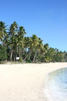 Free Exotic Beach Royalty Free Stock Photos - 6423788
