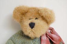Free Teddy Bear Royalty Free Stock Image - 6426476