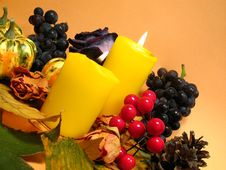 Free Autumn Still Life Royalty Free Stock Image - 6428196