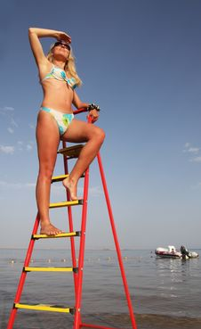 Tanned Girl On The Stepladder. Stock Image