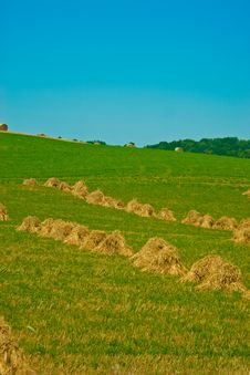 Free Reaped Field And Straw Stock Image - 6428581