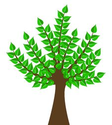 Free Green Tree Royalty Free Stock Image - 6428966