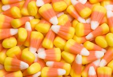 Free Candy Corn Stock Photography - 6429172