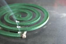 Free Mosquito Coil Stock Images - 6434204