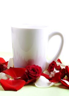 Cup And Rose Petals Stock Photography