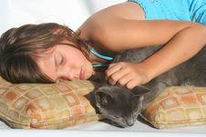 Free Cat Nap Stock Photography - 6436722