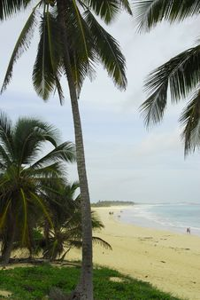 Free Macau Beach - Punta Cana Stock Photography - 6437402