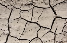 Free Cracked Mud Royalty Free Stock Photography - 6437717