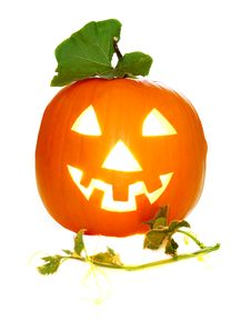 Free Halloween Pumpkin Royalty Free Stock Photo - 6439395