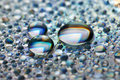 Free Drops Stock Photo - 6441090