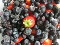 Free Frozen Berries Stock Image - 6443821