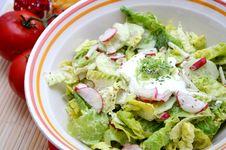 Free Salad Stock Photography - 6441032