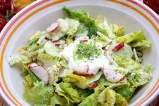 Free Salad Stock Image - 6441111