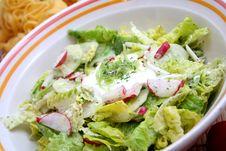 Free Salad Royalty Free Stock Photos - 6441118