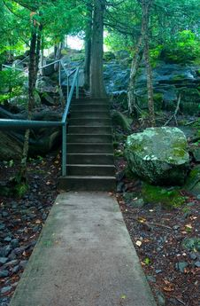 Free Stairway In The Woods Royalty Free Stock Photo - 6442045