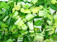 Free Celery Stock Photography - 6442662