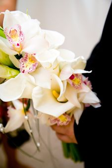Free A Bouquet Of Orchids And Lilies Royalty Free Stock Photo - 6442675