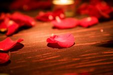 Free Red Rose Petals Royalty Free Stock Images - 6442679