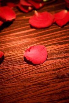 Free Red Rose Petals Royalty Free Stock Images - 6442689