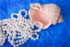 Free Beads Of Pearls With Shell On Blue Background Royalty Free Stock Image - 6444126