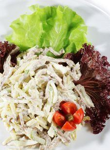 Free Salad Stock Image - 6444781