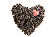 Free Heart For Seeds Royalty Free Stock Photo - 6447005