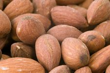 Free Almonds Royalty Free Stock Photography - 6448917
